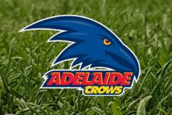 Crows cleared over 2018 pre-season training camp