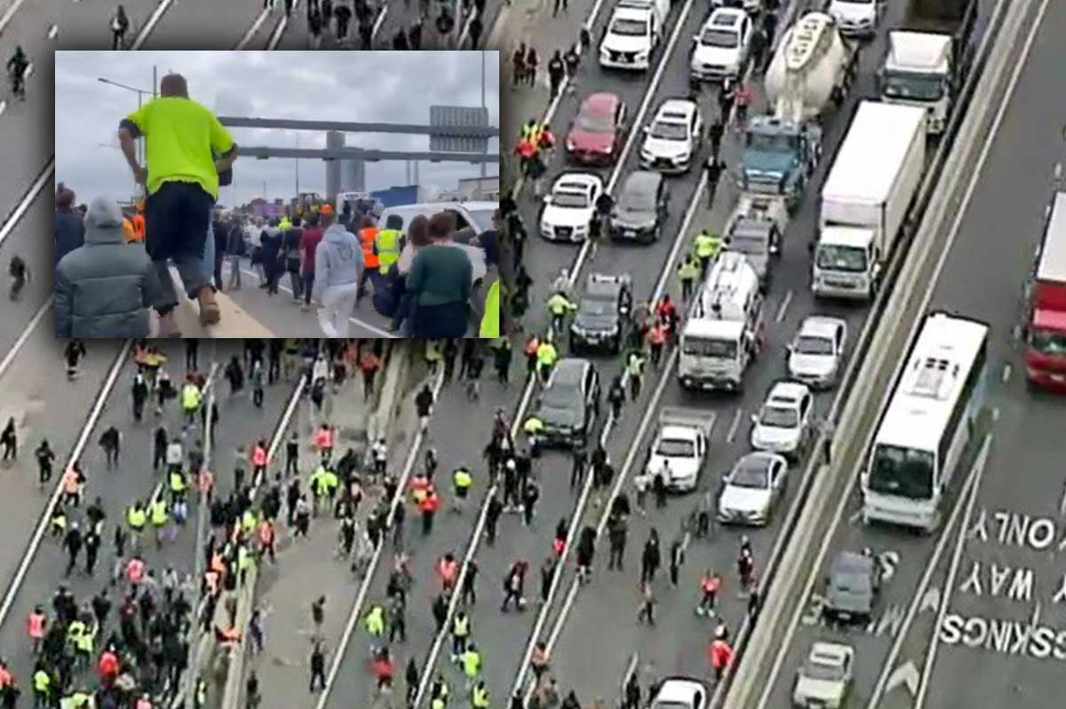 Article image for Violent anti-vaccination protest ends up on West Gate Freeway