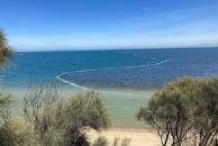 What caused this? Listener asks for answers on strange sight in the bay